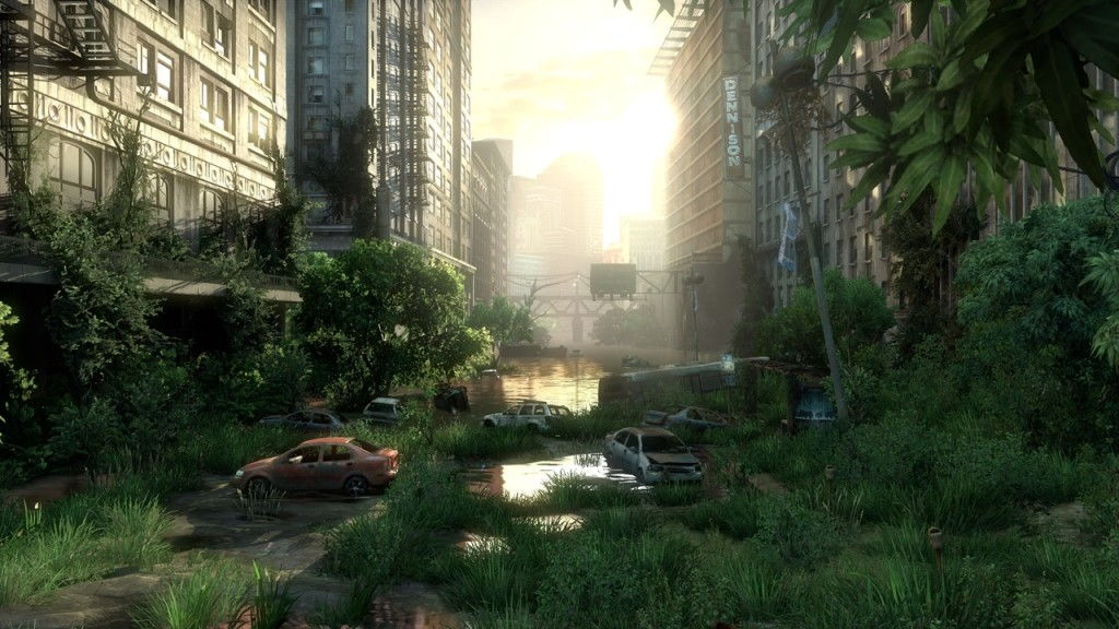 last of us landscape
